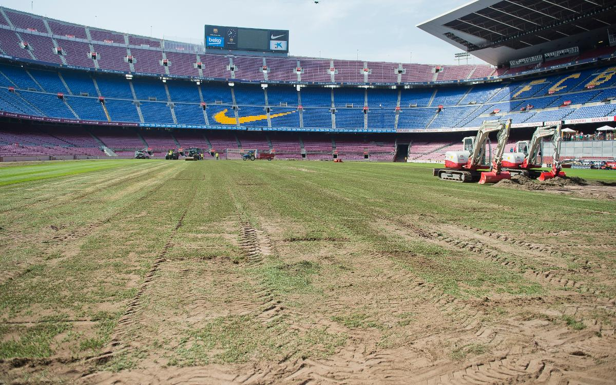 Inside view of the stadium re-turfing