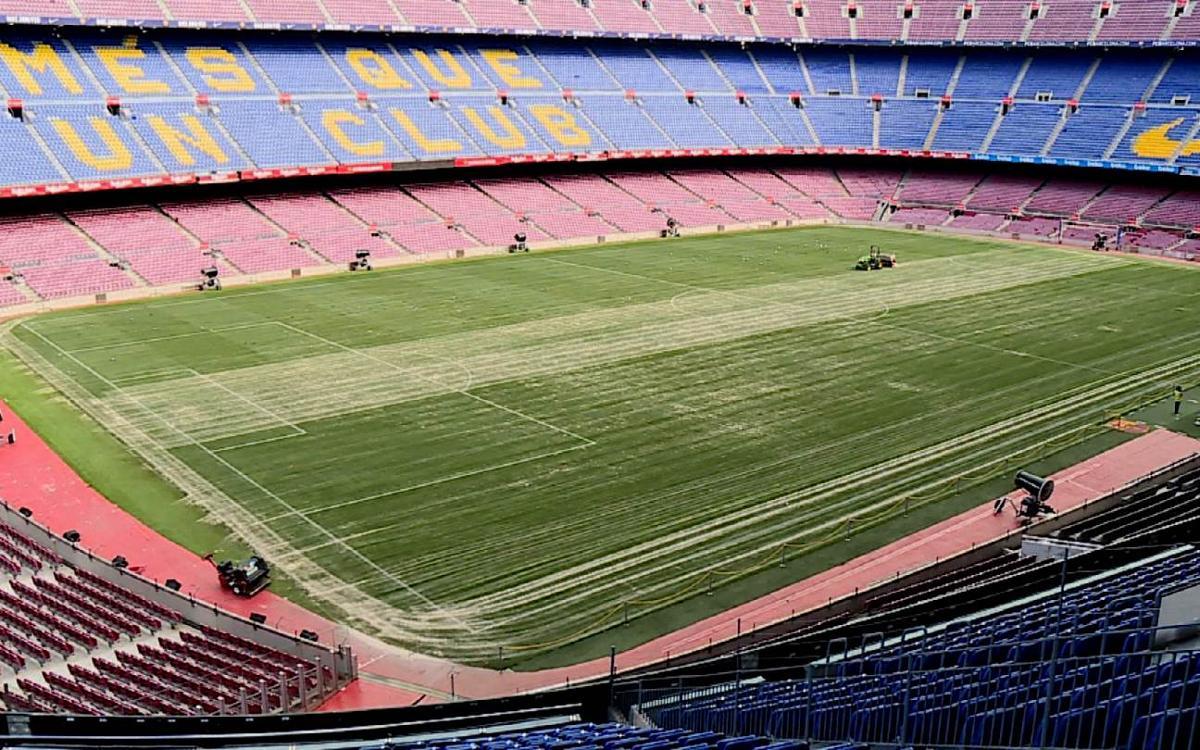 Tasques de manteniment a la gespa del Camp Nou